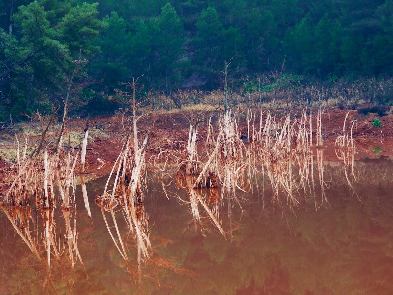 Zoom sur les boues rouges de l'usine ALTEO