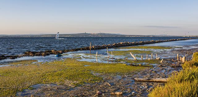 La science au service de la préservation des lagunes