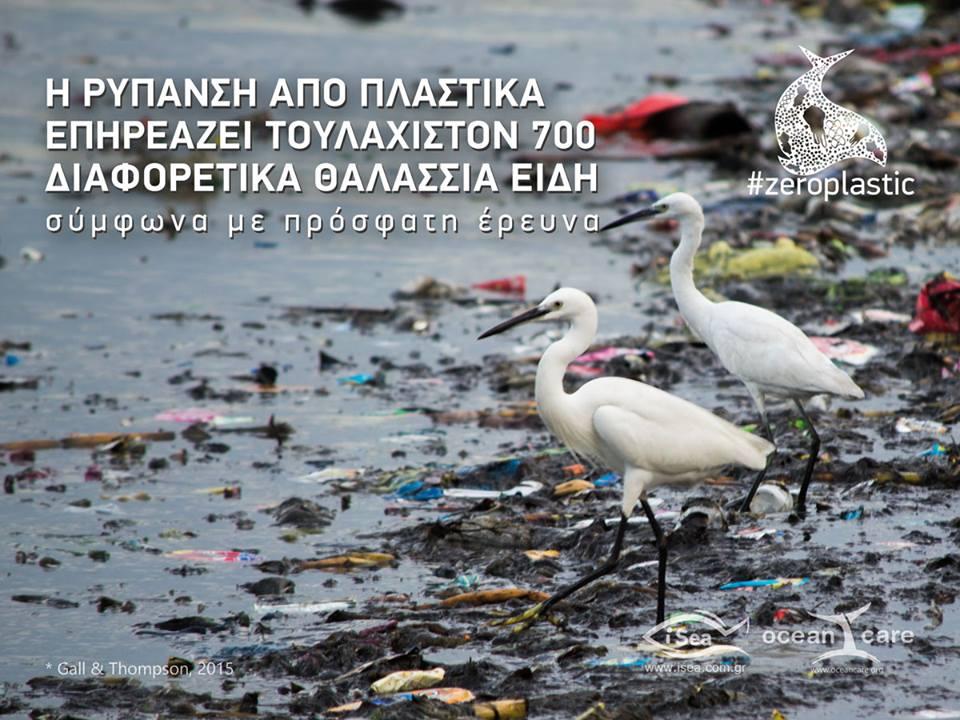 Une ONG pour protéger la mer au pays de Poséidon