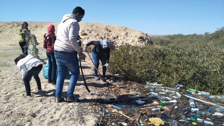 A Alexandrie, la guerre au plastique est déclarée