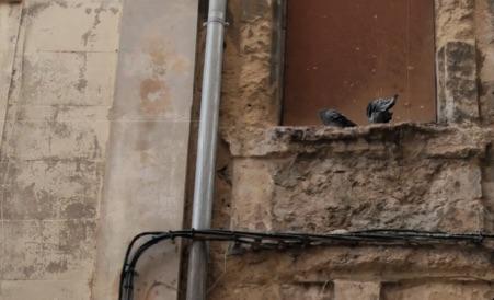 Les projets de Samia Ghali pour sauver le logement à Marseille