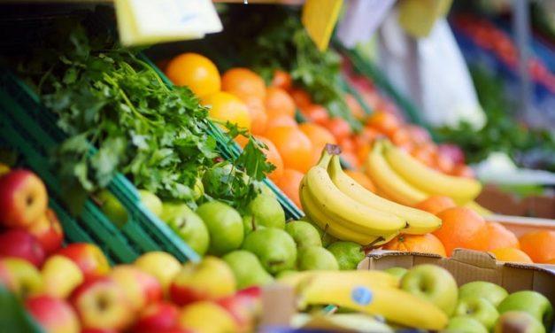 Pour plus de justice alimentaire à Marseille, ou comment allier précarité financière et alimentation de qualité