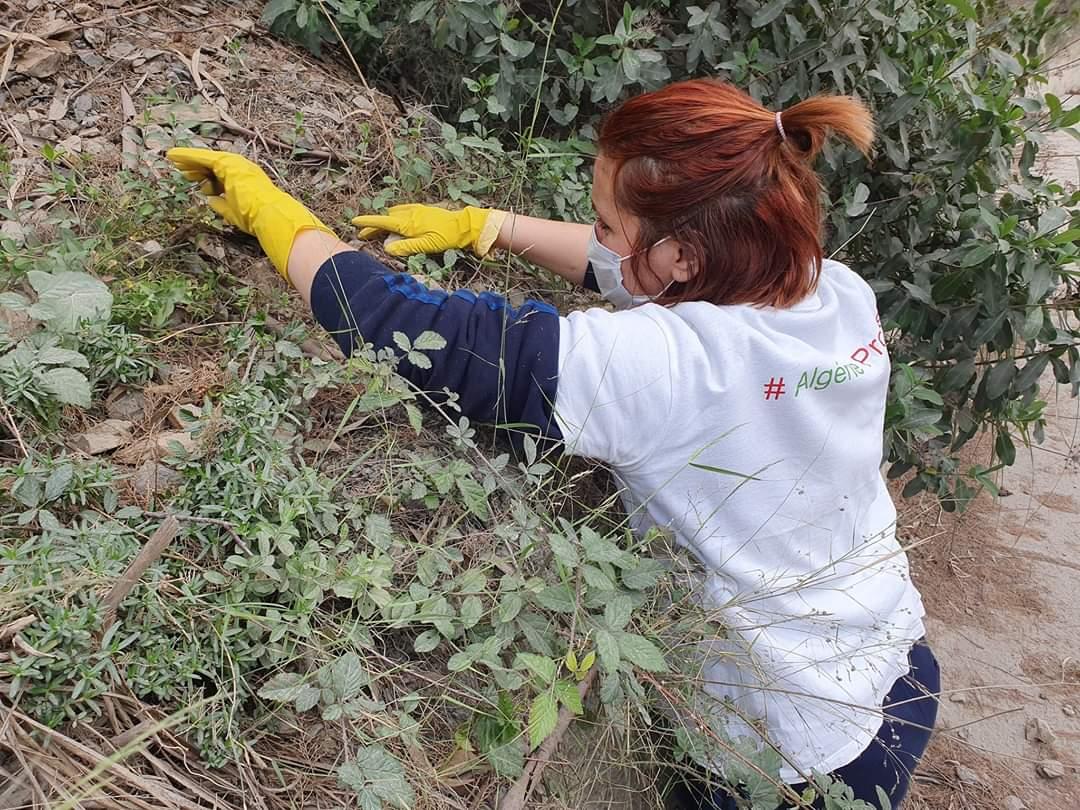Souha, Assia et Kawter, trois Algériennes engagées pour l'environnement