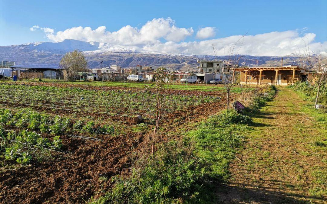 Construire son indépendance alimentaire, un défi méditerranéen