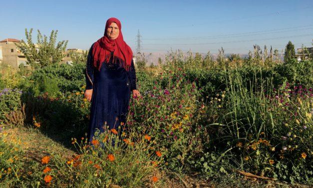Quel avenir pour les nouvelles générations d'agriculteur.ices en Méditerranée ?