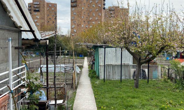 Jardins d'aubervilliers, la lutte continue